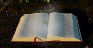 Qual seu recitativo Bíblico para hoje?