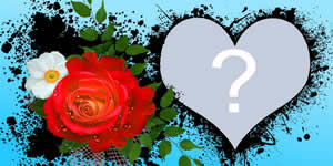 Frumos inima cadru cu flori. Faceți-vă propriul cu fotografie!