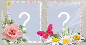 Linda moldura de borboleta e flores para 2 fotos. Faça já sua!