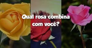 Qual rosa combina com você?