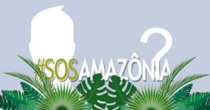 Se você também é contra acabar com nossa floresta Amazônica compartilhe esse tema com sua foto do perfil