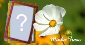 Linda moldura para foto com flor branca e frase personalizada!