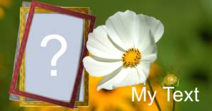 Photo frame with white flower + your photo + a note of your choice!