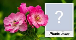 Linda moldura com flores pink e foto em estilo polaroid + frase de sua escolha!