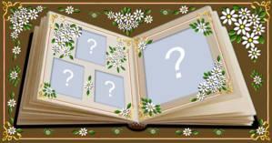 Escolha 4 Fotos que você colocaria neste Lindo Albúm de Florzinhas!