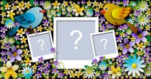 Moldura de Passarinhos cheia de Florizinha c/3 Fotos. Faça a Sua!