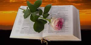 Quali amici sono parte della tua gruppo di preghiera?