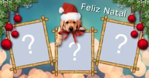 Linda moldura de Natal com cachorrinho. Coloque três fotos!