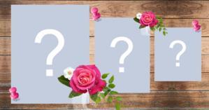 Moldura de Rosas com suas 3 fotos mais admiradas de todos os tempos!