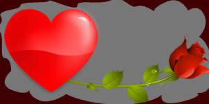 Montagem de rosas com 6 dos amigos que você tem mais afinidade