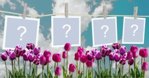 Varal com Fotos no jardim. Faça o seu com 4 Fotos!