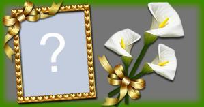 Moldura com Flor de copo de leile. Faça com sua Foto!