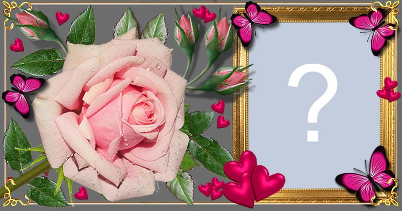 Beautiful Rose Frame With Butterflies Make Yours