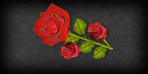 Envie uma Rosa com sua Foto aos seus Amigos como prova de Carinho!