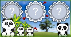 Coloque 3 Fotos nesta Linda Moldura dos Pandas!