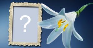 Photo Frame with White Lily! Add your photo!