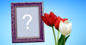 Moldura com tulipas vermelhas e branca. Coloque sua foto!