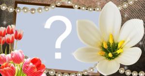 Coloque uma foto favorita do seu álbum nesta linda moldura de lírio branco!