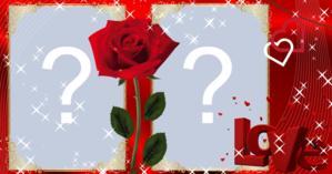 Moldura uma rosa com amor para duas fotos. Faça a sua!