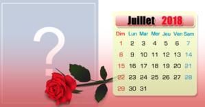 Calendrier de juillet avec votre photo la plus aimée du mois. Faites le vôtre!
