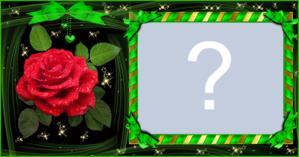 Moldura de Fitas Verdes com Rosa vermelha. Faça com sua foto!