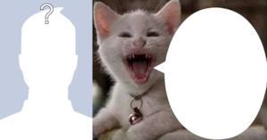 O que o gatinho irônico disse de você? Faça o teste e descubra!