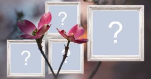 Linda moldura para 4 fotos com flores, e com bordas de madeira! Adicione suas fotos