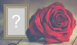 Moldura Preto e Branco com uma Rosa Vermelha. Adicione sua Foto!