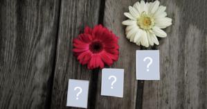 Moldura para três fotos, com duas flores e fundo de madeira