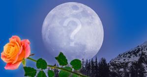 Faites un montage avec votre photo sur la lune. Quelle photo choisiriez-vous?