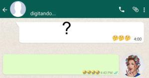 Como foi sua conversa com a Dona Hermínia no Whatsapp? Faça o teste e descubra!