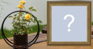 Moldura com vaso de Flor. Coloque uma foto sua!