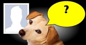 O que o cãozinho tem vontade falar sobre você? Descubra