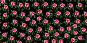 Moldura de Rosinhas com suas 5 Fotos mais Curtidas de todos os Tempos. Faça a Sua!