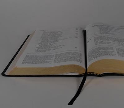 Qual seu Versículo Bíblico de hoje?