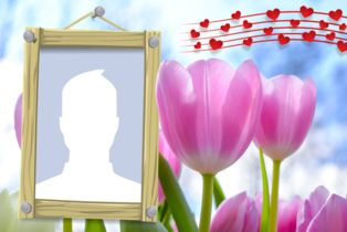 Beautiful photo frame with pink tulips. Add your photo