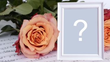 Beautiful photo frame with orange rose and white border!