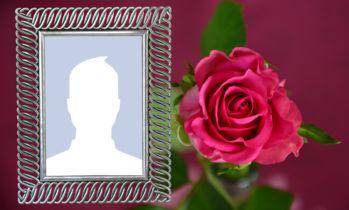 Ramă foto frumoasă cu un trandafir frumos! Adăugați-vă fotografia!