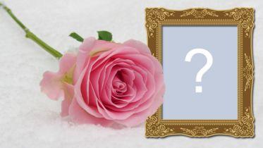 Frumoasă fotografie montajă cu cadru de trandafir și lemn! Adăugați fotografia