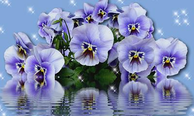 Como ficaria sua Foto na Moldura com Flores Lilás?