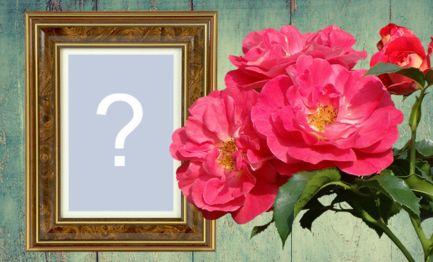 Moldura com rosas e borda de madeira. Adicione sua foto!