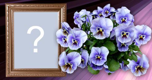 Adicione sua foto nesta linda moldura com flores lilás!