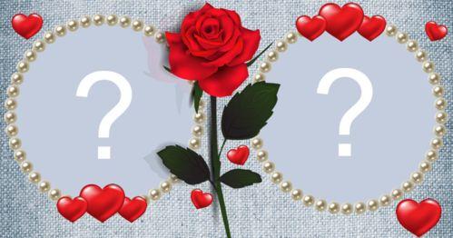 Aggiungi 2 foto del tuo album in questa splendida cornice di rose!