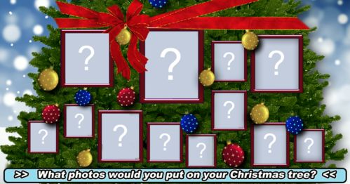 What 12 photos would you put on your Christmas Tree?