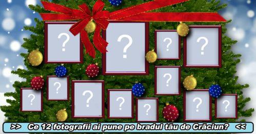 Ce 12 fotografii ai pune pe bradul tău de Crăciun?