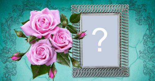 Add your photo in this magnificent frame with roses and blue background!