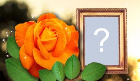 Beautiful Montage with orange rose and golden border. Add a photo!