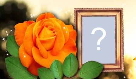 Linda Montagem com rosa laranja e borda dourada. Adicione uma foto!