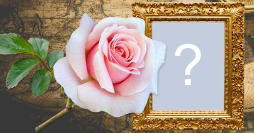 Photo frame with old style background, golden border and a rose! Add a photo!
