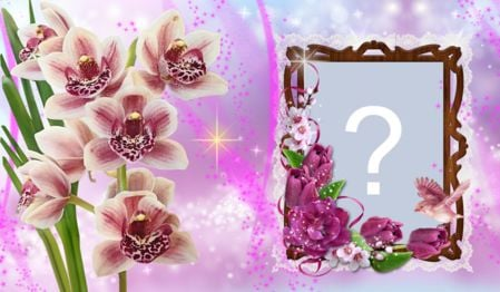 Orchid frame. Create yours!